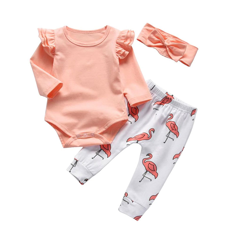 Flamingo On A Bicycle Onesies Outfits as picture3 Months